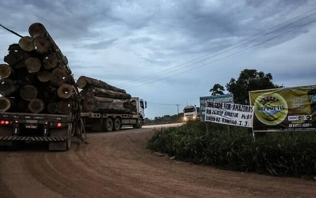 Caminhão de madeira deixando P.A Flor do Amazonas