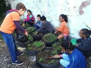 Ao mesmo tempo em que se alimentam de forma saudável, pequenos estudantes aprendem a cultivar as hortaliças