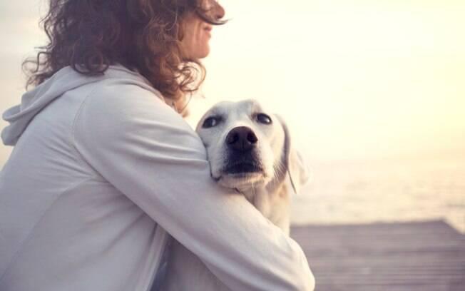 É preciso acalmar o cachorro com medo