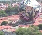 Polícia Ambiental prende grupo após queda de balão gigante
