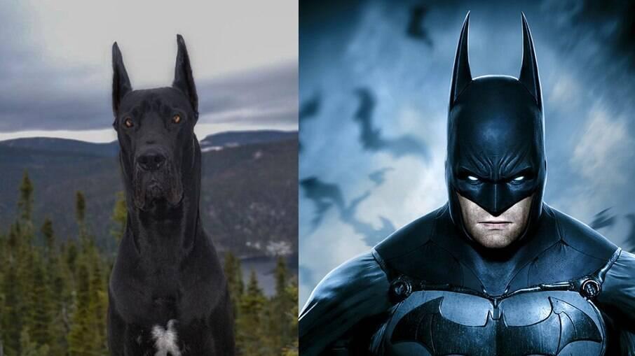 Com quase quarenta mil seguidores no Instagram, Enzo faz sucesso na internet pela semelhança com o Batman.