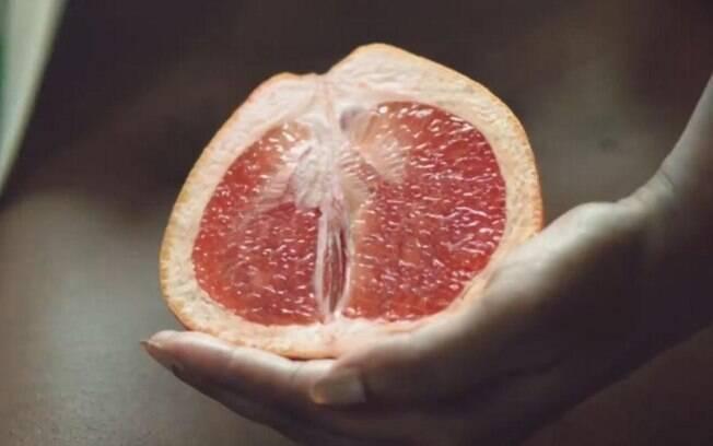 Frutas, flores, conchas, frutos do mar e outros objetos foram usados para representar a diversidade da vulva
