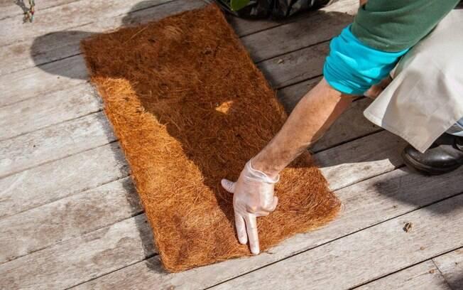 Antes de cortar a placa de fibra de coco, meça a largura do bloco com as raízes da planta (será de aproximadamente 20 cm). Foto: Edu Cesar/Fotoarena