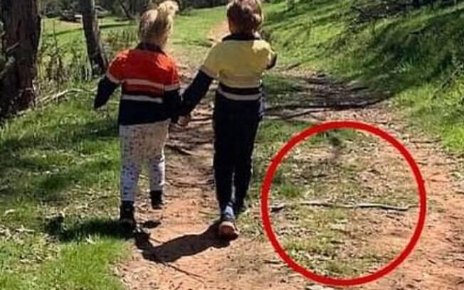 Risco iminente de picada da cobra, que passava ao lado das crianças sem que ninguém percebesse.