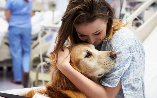 A visita de animais pode ser permitida em hospitais públicos do Guarujá (SP)