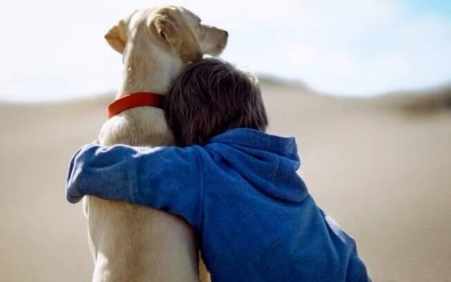 Funerária para animais, o conforto em momentos difíceis.