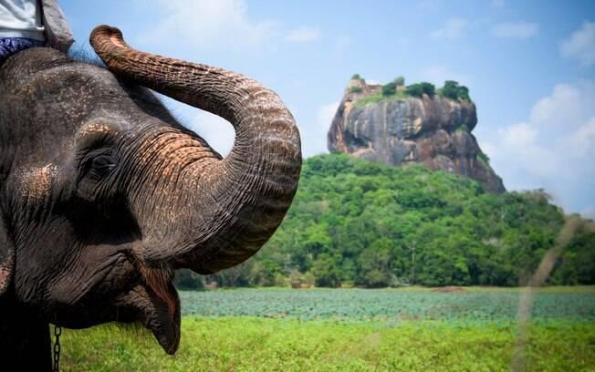 O Sri Lanka ocupa o sexto lugar na lista dos lugares para viajar que mais oferecem riscos de doenças