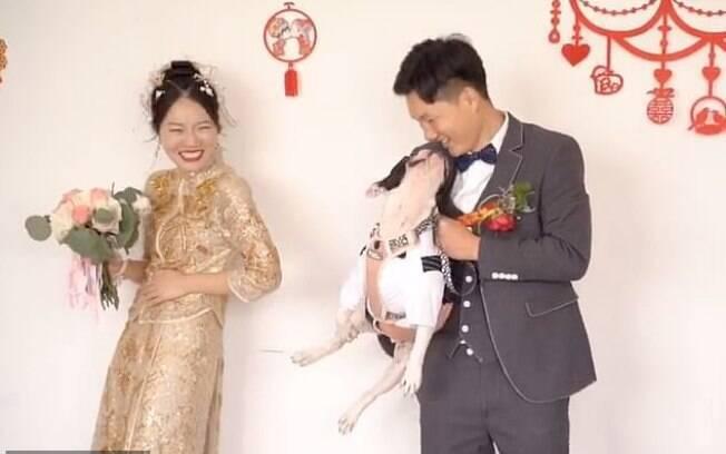 Depois de chutar noiva, cãozinho pede carinho do noivo