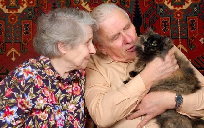 Os animais de estimação contribuem de forma significativa para a melhora da saúde dos idosos, por isso são muito recomendados