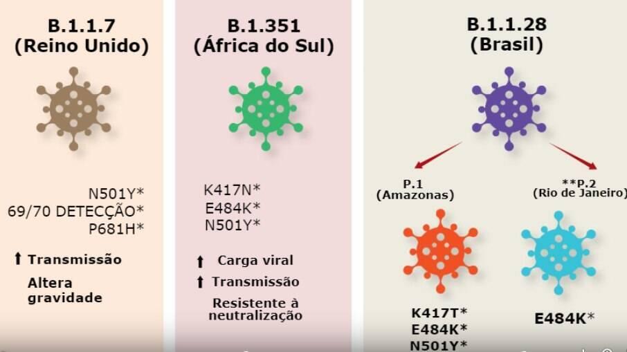 Estudo avaliou eficácia da vacina contra três variantes do coronavírus