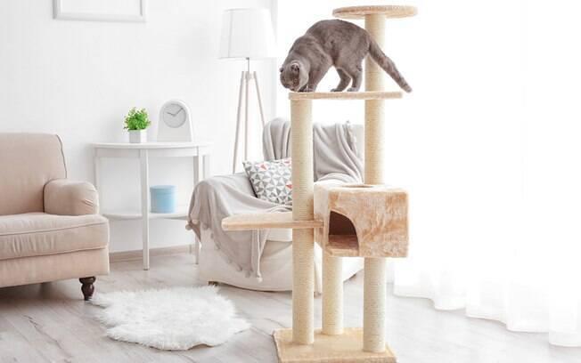 A torre é uma ótima opção para gatos que amam subir em tudo