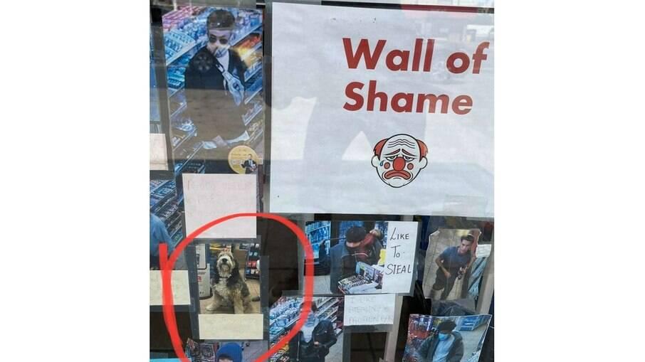 Mural da vergonha com a foto do cachorro, na legenda diz