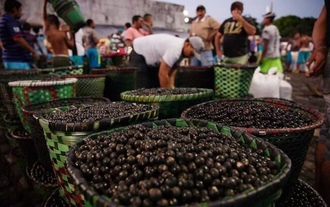 Culturalmente, há muito o que fazer em Belém do Pará, e um dos principais elementos da cultura da cidade é o açaí