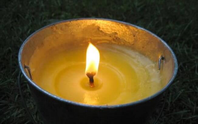 Conhea o poder da citronela e como usar na sua casa