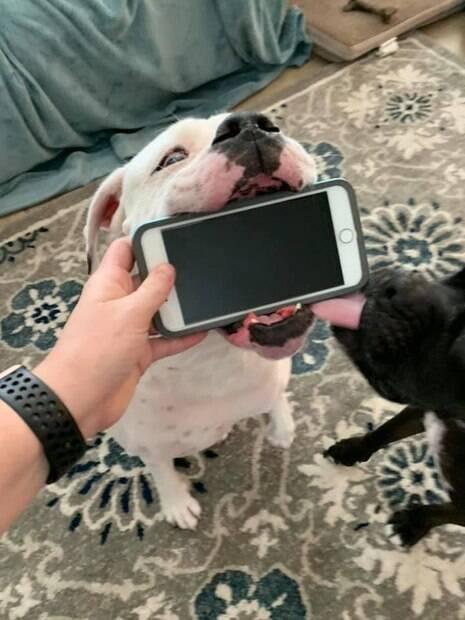 Marlow não querendo devolver o celular de Alyssa