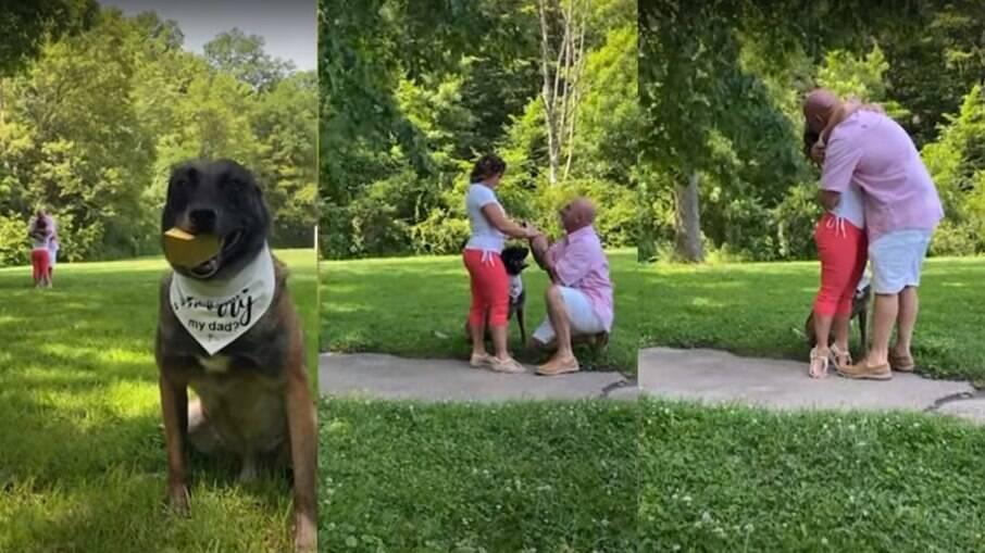 Cachorro ajuda tutor a pedir mulher em casamento