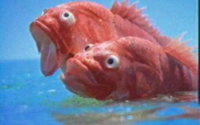 A publicidade dos peixinhos saltando de felicidade com a chegada da perua Weekend na praia numa antiga publicidade da Fiat.