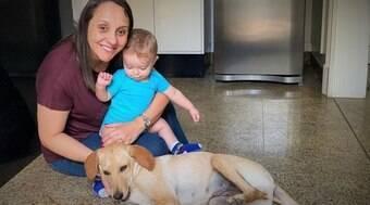 Deputada propõe a criação de SUS e farmácia popular para pets