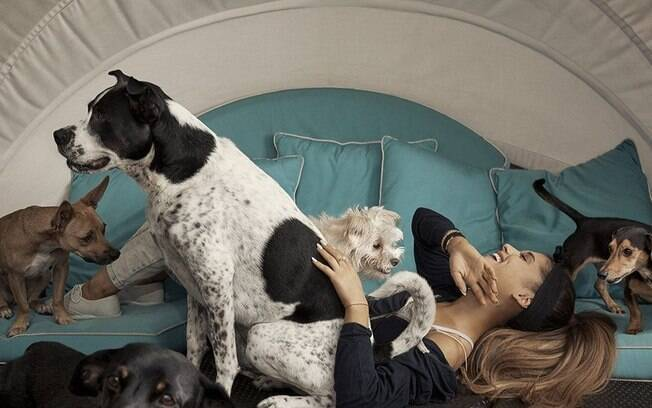 A cantora Ariana Grande é uma das celebridades apaixonadas por cachorros, sendo mãe de quatro patas de nove cães
