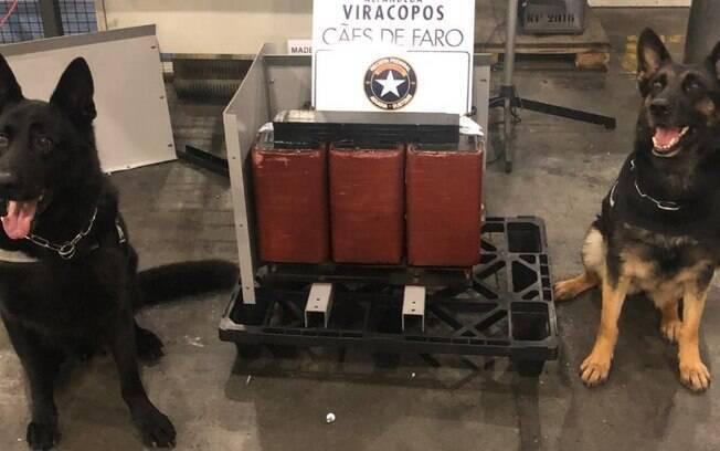 Receita Federal de Viracopos apreende seis quilos de cocaína