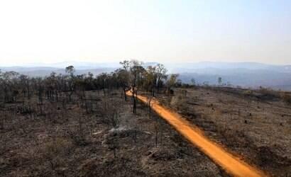 Após incêndio, Parque do Juquery será reaberto hoje