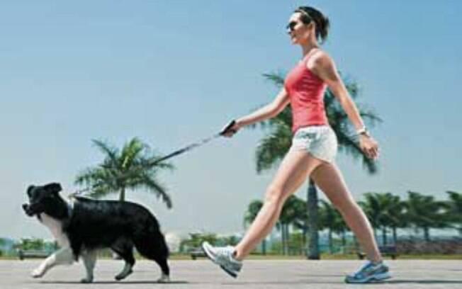 Saiba a importância de passear com seu cão