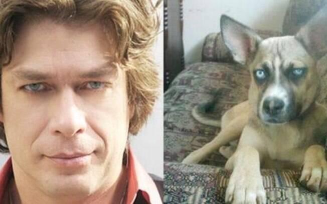 Quem mais está ansioso pra ver este cachorrinho galão na próxima novela da Globo?