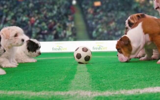 Empresa aposta em vídeo de cães fofinhos para acalmar os nervos dos torcedores durante jogos da Copa
