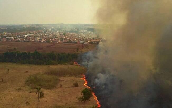 Fogo queima região de mata no Pantanal.