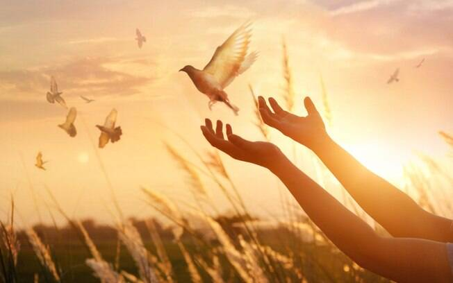 Simpatias para atrair paz e tranquilidade em momentos desafiadores