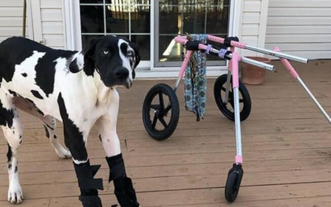 Após ter ficado tetraplégica, Olive consegue voltar a andar