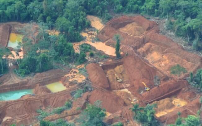 Motivados pelo preço do ouro, cerca de 5 mil garimpeiros atuam dentro da Terra Indígena Kayapó, um dos últimos redutos de mata nativa no Estado.