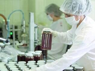 Rígidos. Cooperativa Nacional da Apicultura testa em seu laboratório o mel que vem dos cooperados