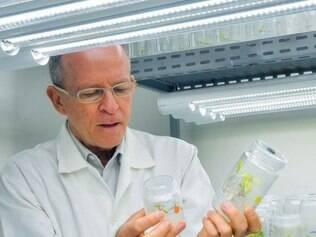Avanço. O pesquisador da Embrapa, Elíbio Rech, desenvolvedor da teia de aranha sintética