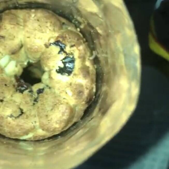 verme no biscoito da Bauducco