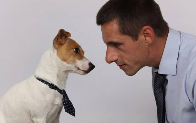 A personalidade do cachorro pode ser moldada de acordo as características do dono