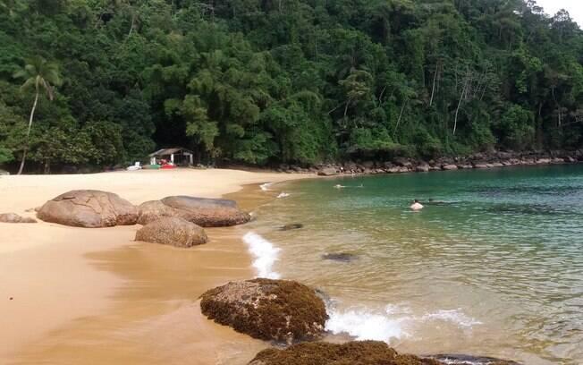 Praia do Cedro é perfeita para entrar em contato com a natureza