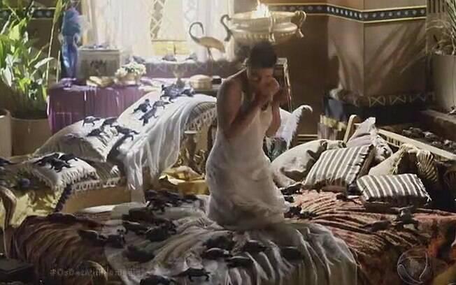 Rainha Nerfetari acorda com o quarto infestado de rãs e sapos durante segunda praga