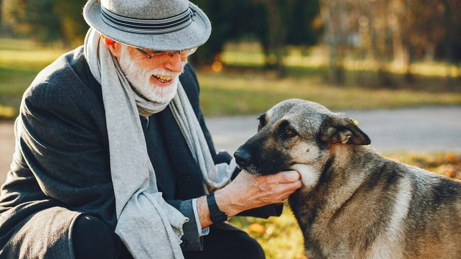 A idade canina não pode ser comparada diretamente com a idade humana, mas há uma média comparativa básica