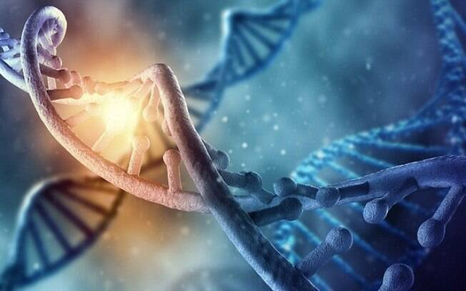 Cientistas afirmam que sucesso da evolução dos dinossauros ocorreu devido a 'grande quantidade' de cromossomos