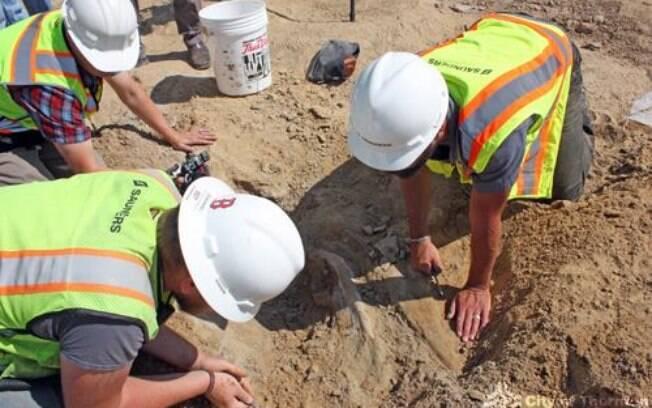 Cientistas do Museu de Ciências e Natureza de Denver trabalham para remover o esqueleto do dinossauro do local