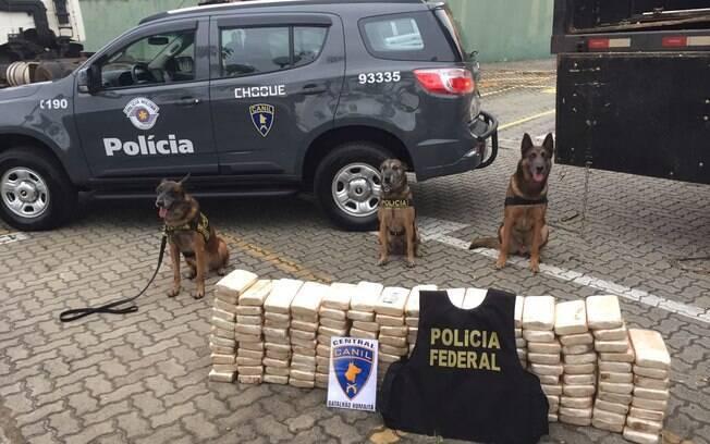 Droga apreendida pelo Canil da PM em ação de apoio à Polícia Federal