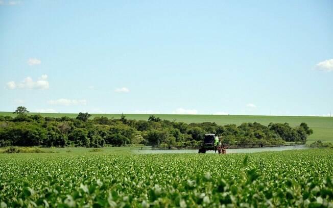 Agrotóxicos podem aumentar vulnerabilidade à Covid-19, diz relatório inédito