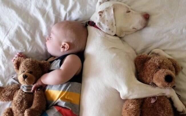 O convívio de criança e cachorro pode ser benéfico para os dois lados
