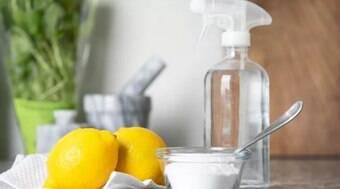 Confira produtos de limpeza caseiros naturais