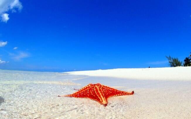 Para quem vai às Ilhas Cayman e gosta de paisagens paradisíacas, a praia de Starfish Point é o lugar certo
