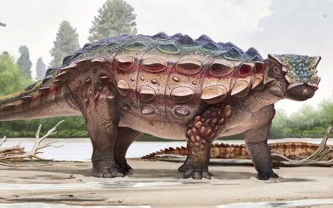 Nova espécie de dinossauro que atravessou a Ásia até chegar em território americano teve fóssil exposto em museu