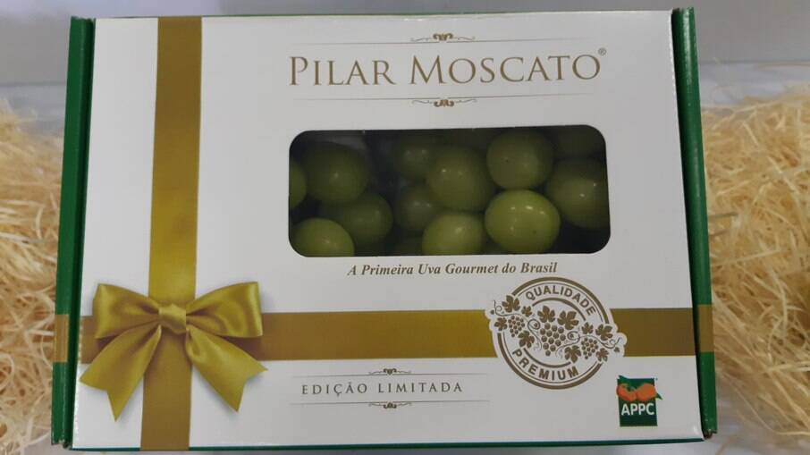Uva Pilarmoscato: primeira variedade gourmet do Brasil