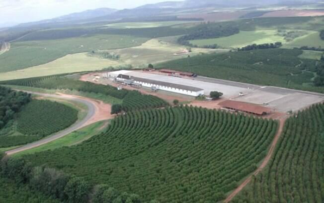 Produtores rurais receberão R$ 10 bilhões do Banco do Brasil