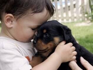 O estudo sugere que ficar perto de um cachorro que passa parte de seu dia ao ar livre fortaleceria o sistema imunológico